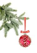 Palla di natale sull'albero su sfondo bianco — Foto Stock