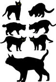 Vector black silhouettes of cats — Stock Vector