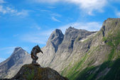 Wooden troll against mountain crest and blue sky. Trollstigen. — Stock Photo