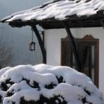 Winter — Stock Photo #7393267