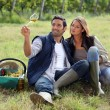 Couple drinking wine in a vineyard — Stock Photo #7132304