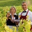 Waitress and sommelier in vineyards — Stock Photo
