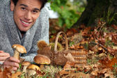 Man gathering mushrooms and chestnuts in the forest — Stock Photo