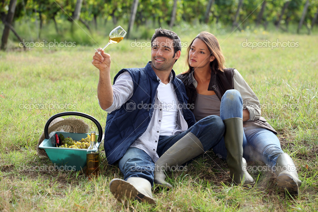 Couple drinking wine in a vineyard  Stock Photo #7132304