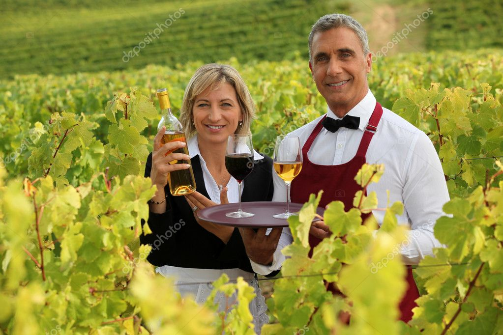Waitress and sommelier in vineyards  Stock Photo #7132998