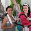 Young women in the gym — Stock Photo #7231003