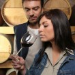 Winegrowers tasting a wine - Stockfoto