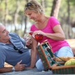 Middle-aged couple enjoying picnic — Stock Photo