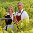 Man and woman serving white wine in a vineyard — Stock Photo