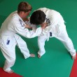 Stock Photo: Judo fight.