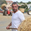 A farmer taking straw with a fork - Stock Photo