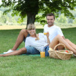 Young couple having a picnic in a meadow — Stock Photo