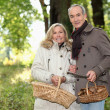 Foto Stock: Older couple picking mushrooms