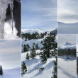 Snowy landscapes — Stock Photo