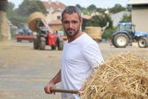 A farmer taking straw with a fork — Foto de Stock