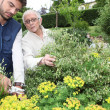 Stock Photo: Young man gardening with older woman