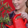 Woman tending to a plant — Stock Photo #7393661
