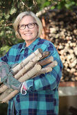Woman collecting wood in the forest — Stock Photo