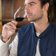Stock Photo: man tasting wine in winery