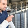 Man smelling his own wine — Stock Photo #7412891
