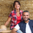 Stock Photo: Farmer couple