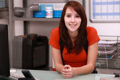 Young woman working in the office of a plumbing firm — Stock Photo