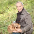 Senior man picking mushrooms - Stock Photo