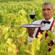 Waiter in field with glass of wine — Stock Photo