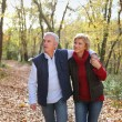 Couple taking romantic stroll in the park — Stock Photo #7607339