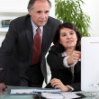 Mature business couple at a computer — Stock Photo
