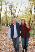 Couple taking romantic stroll in the park — Stock Photo
