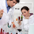 Stock Photo: Scientists conducting experiment