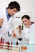 Scientists conducting an experiment — Stock Photo