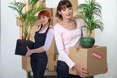 女性 flatmates キャリング段ボール箱と植物 — ストック写真