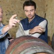 An oenologist and a wine producer - Stock Photo
