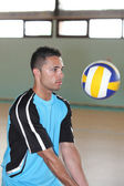 Volley - ball — Foto de Stock
