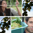 Wine harvesting collage — Stock Photo