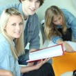 Foto de Stock  : Students in common room discussing assignment