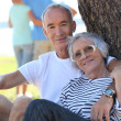 Senior couple sitting by a tree in the summertime — Stock Photo