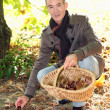 A mature man picking chestnuts. — Stock Photo #7664168