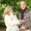 Couple gathering conkers - Stock Photo
