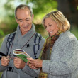 Couple reading a map in a forest — Stock fotografie