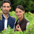 Couple of wine-growers in vineyards — Stock Photo