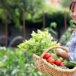 Woman in her vegetable garden — Foto de Stock