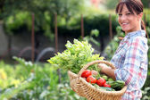 žena v její zeleninové zahradě — Stock fotografie