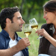 Royalty-Free Stock Photo: Couple drinking wine in field
