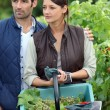 Young couple working in a vineyard — Stock Photo #7691494