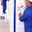 An electrician screwing an electrical outlet and a colleague on a stepladde — Stock Photo