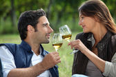 Couple drinking wine in field — Stock Photo