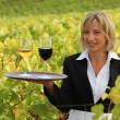 Blond waitress in field holding trey of wine — Stock Photo #7706915